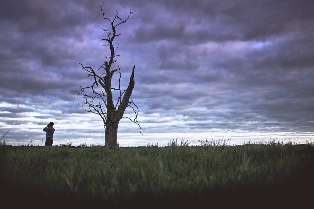 AustralianBeef_Barnbougle_TAS_Australia_CitizensoftheWorld_STILLS_261017_0012.jpg