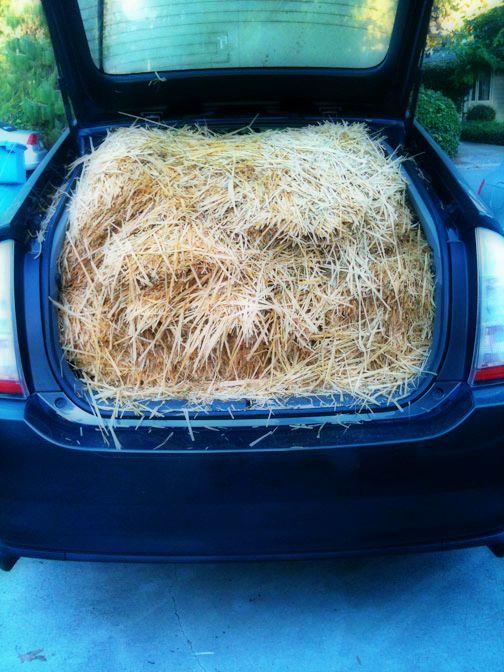 car_hay_wagon.jpg