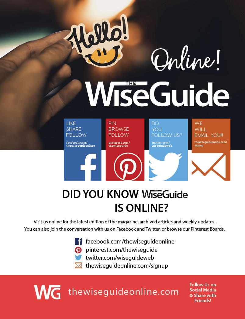 The Wise Guide - Print Ad