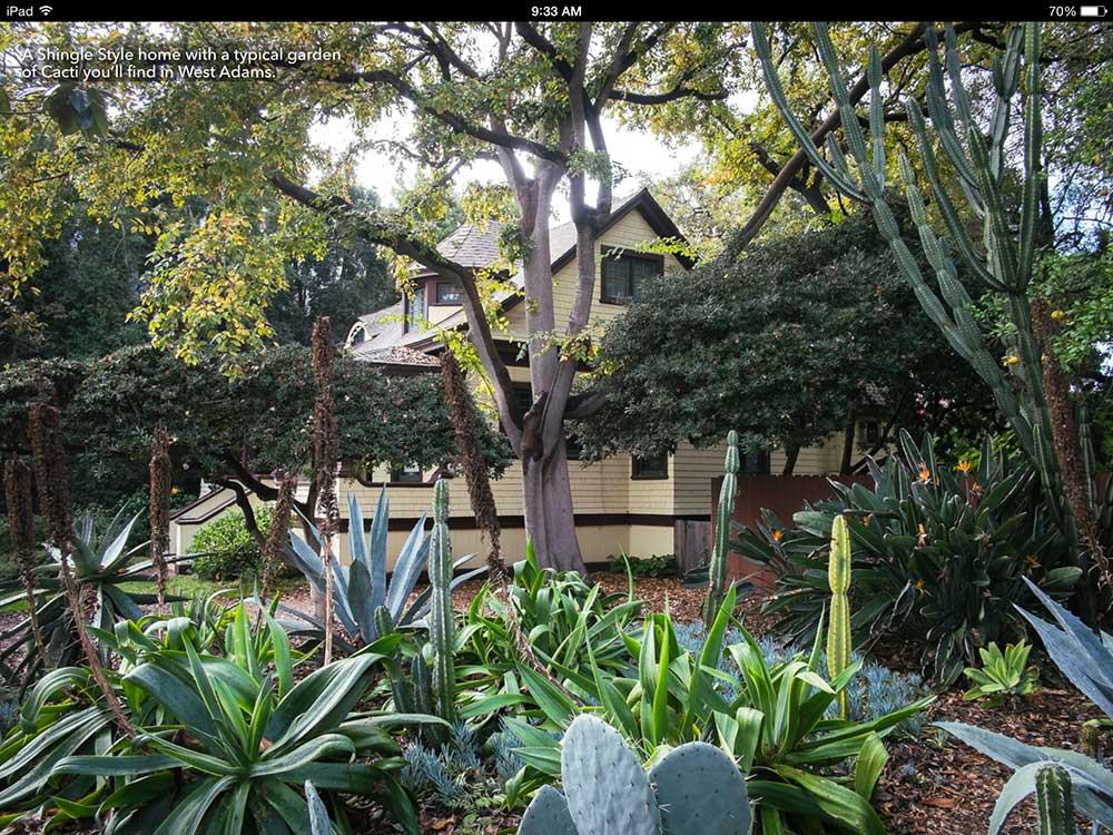 cacti-garden-los-angeles.jpg
