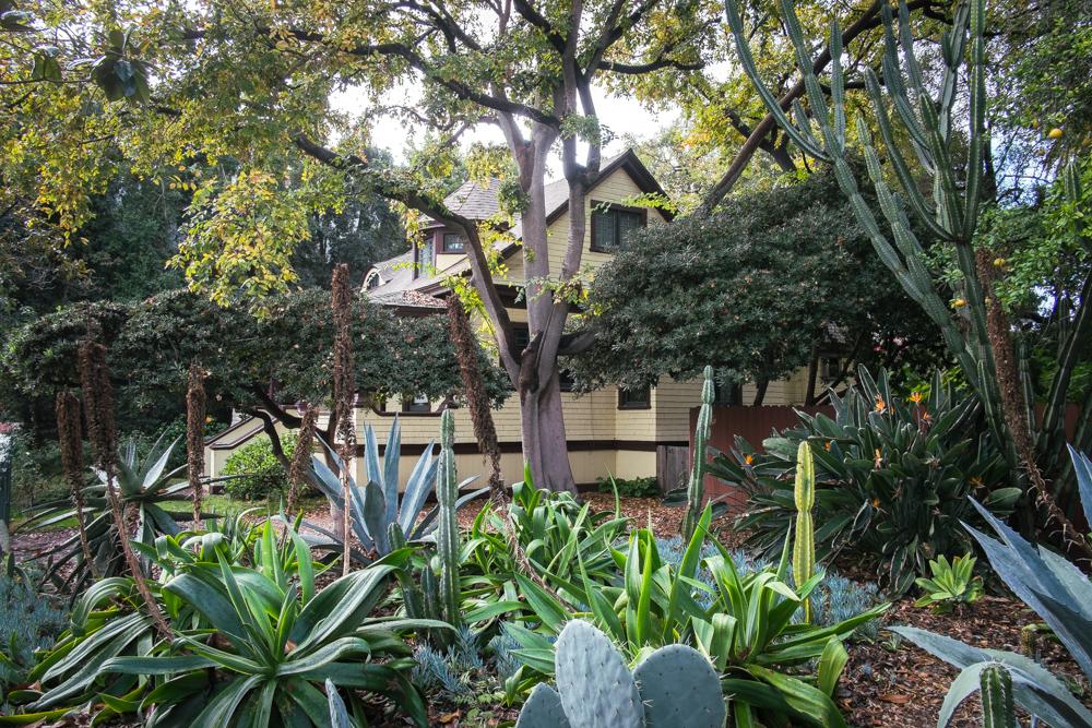 los-angeles-cacti-garden.jpg
