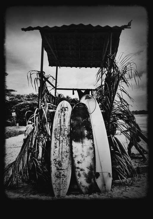 surf_1.jpg