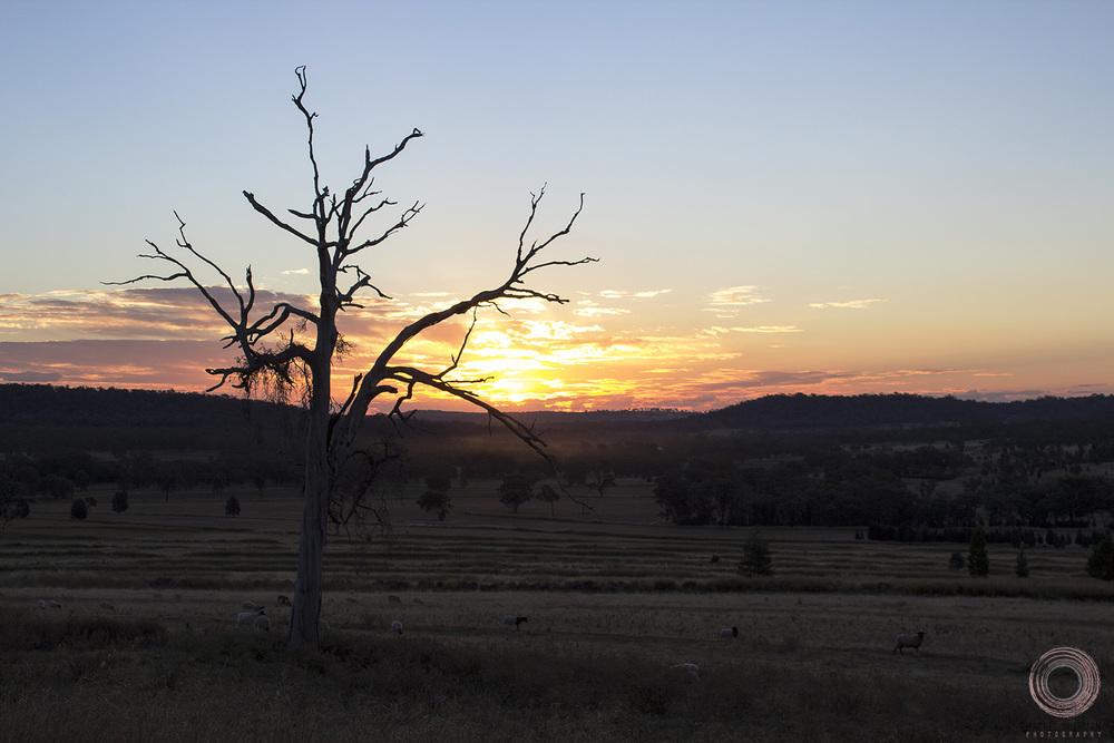 April sunset fb.jpg