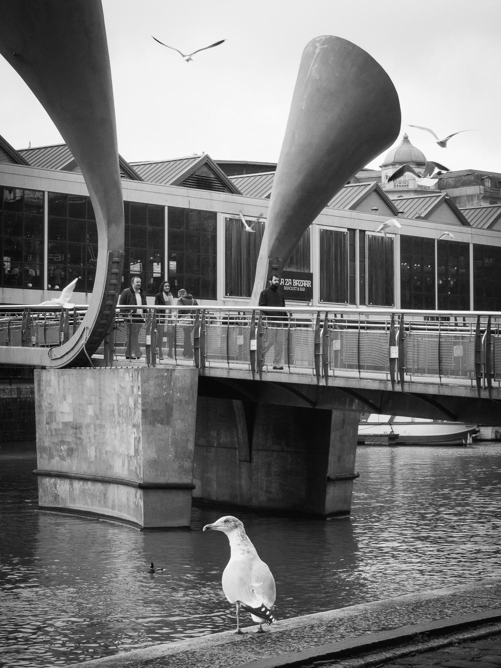 Martin-Drake-Street-Photography-Bristol-Feb-0008.jpg