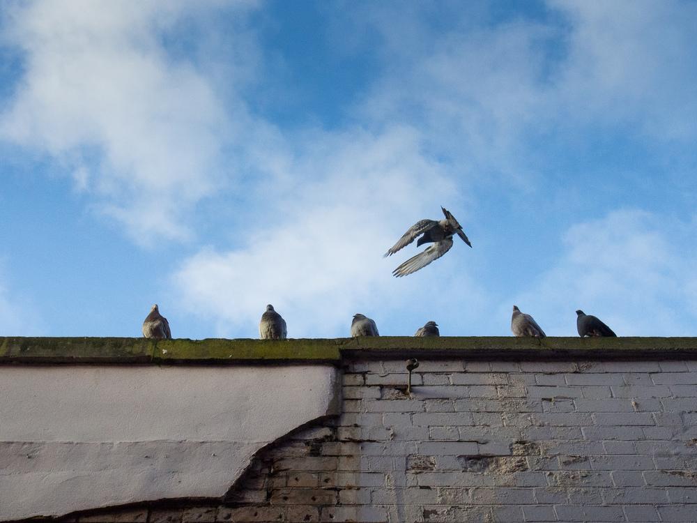 Martin-Drake-Street-Photography-Bristol-Feb-0039.jpg