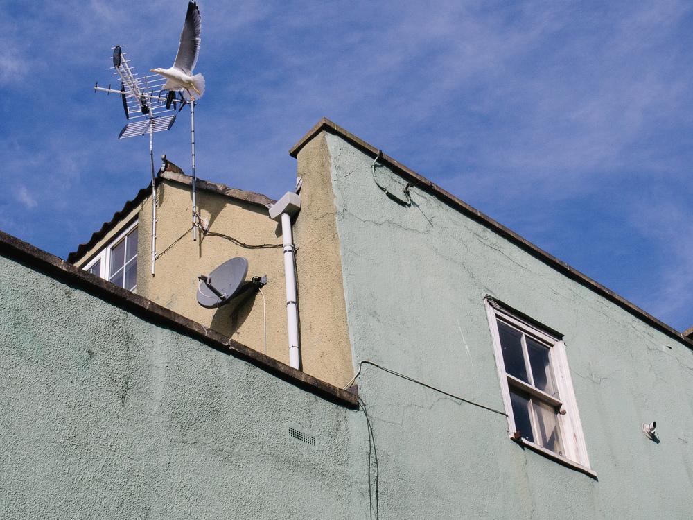Martin-Drake-Street-Photo-April-0048.jpg