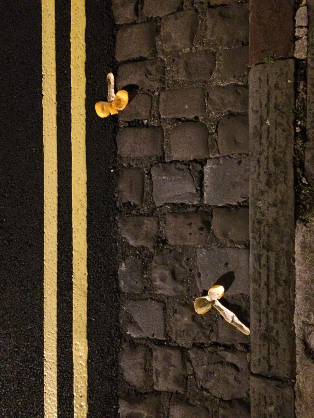Martin-Drake-Street-Photo-April-0053.jpg
