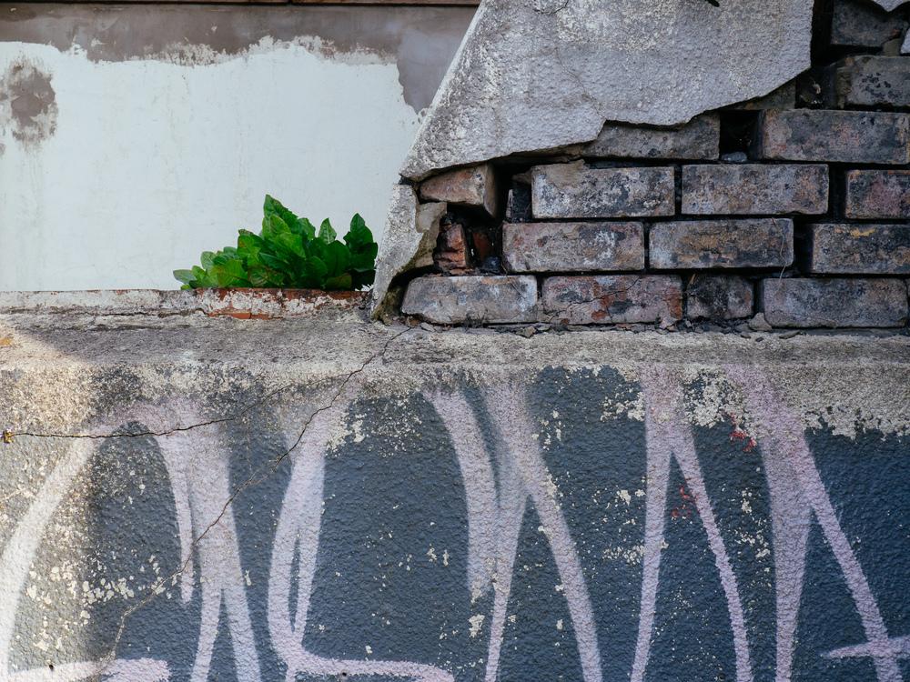 Martin-Drake-Street-Photo-June-0006-(6020091).jpg