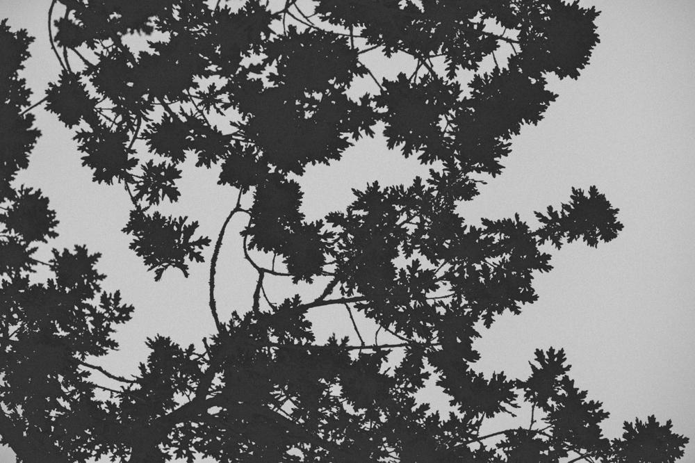 julie-eimear-4.jpg