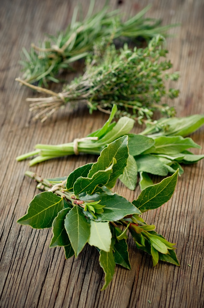 Fresh herbs drying on wooden slat.jpg