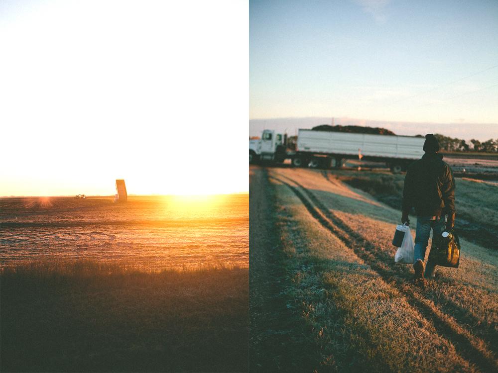 farmmorning.jpg