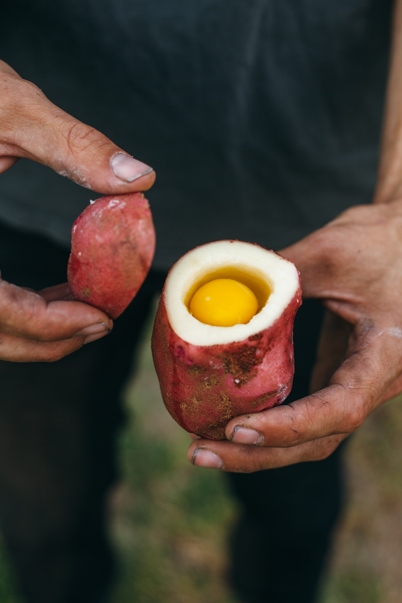 bonfire eggs-7.jpg