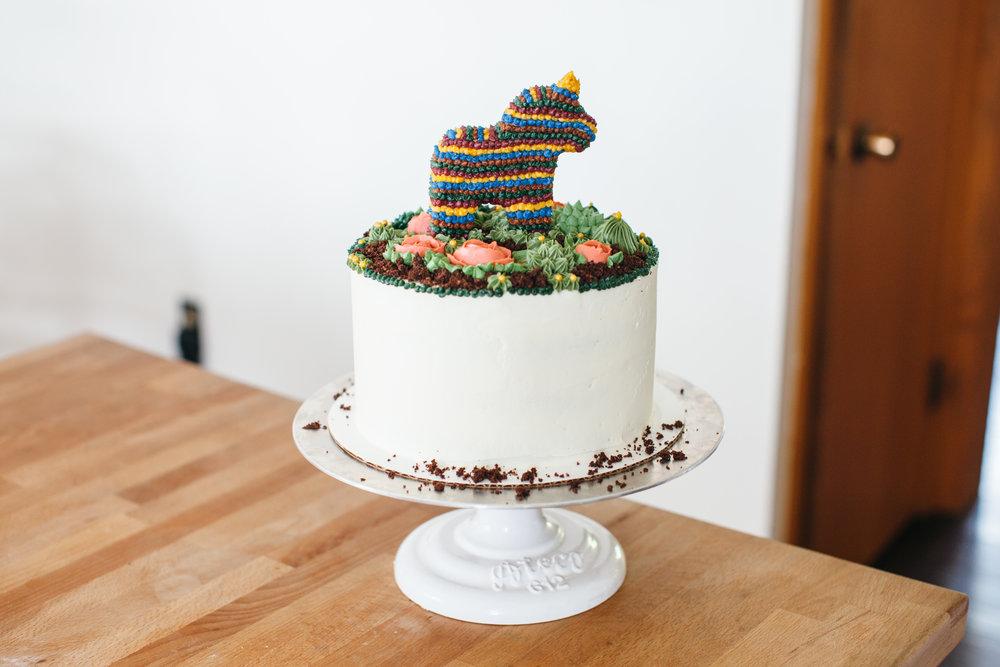 pinata cake-16.jpg