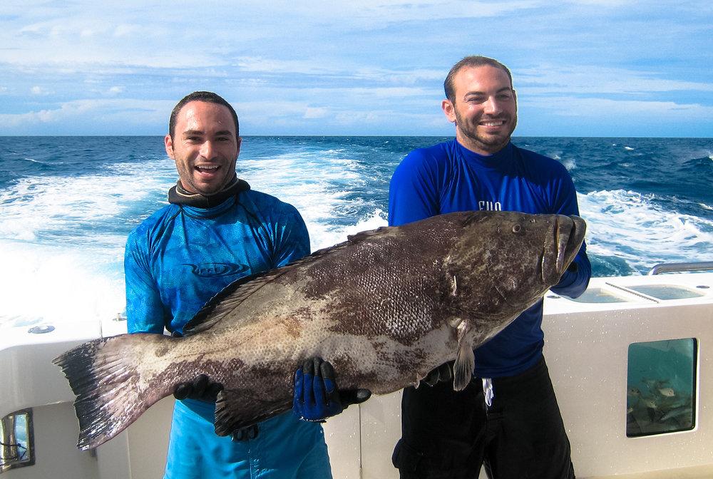 Andiamo - Cay Sal, Bahamas 2012-96.jpg