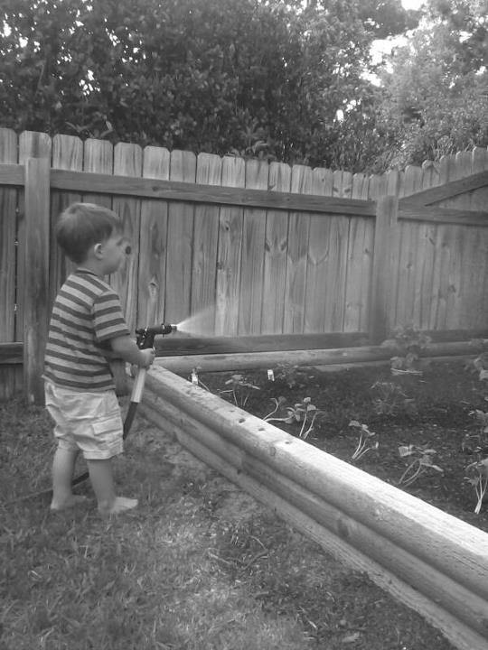 My nephew watering their garden