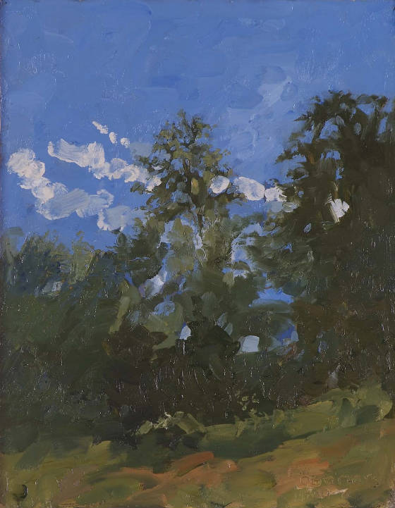 Tree Study, Late Afternoon