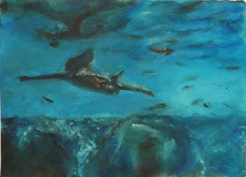 untitled(diver).jpg