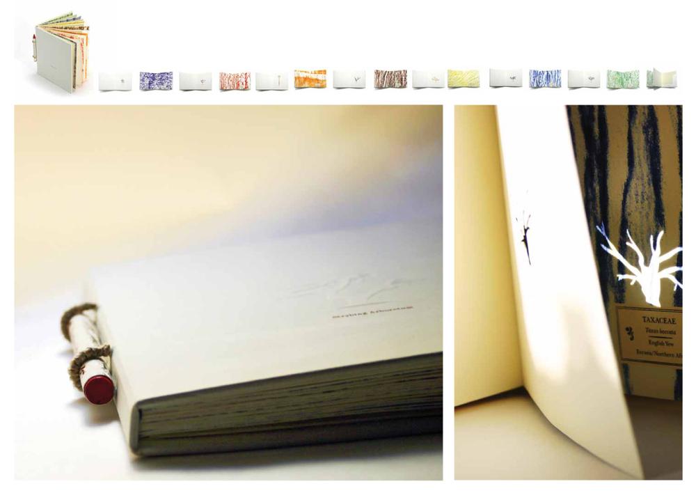 bookdesign2.jpg
