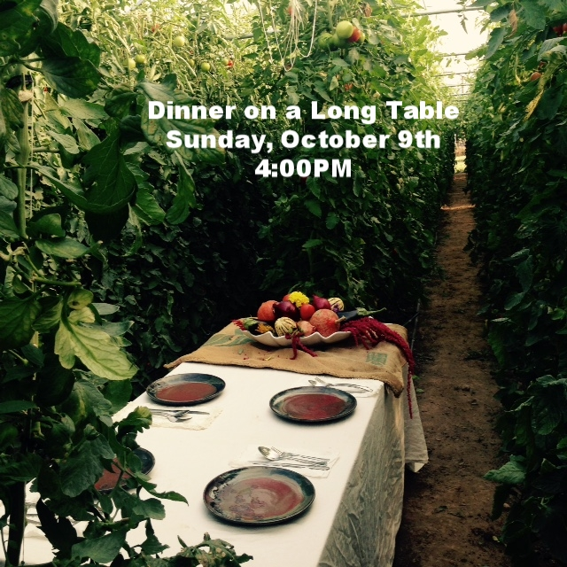 We're hosting the Dinner on a Long Table inside the tomato greenhouse!