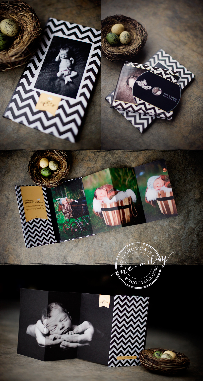 baby-chevron-4x8-accordion-book.jpg