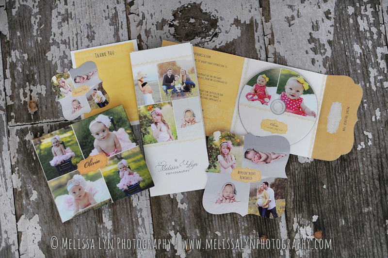 marketing-materials-for-photographers-melissa-lyn-photography.jpg