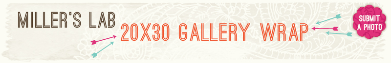 20x30-Miller-Canvas.jpg