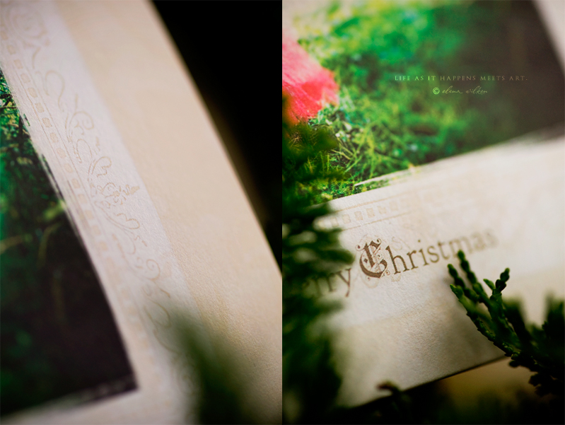 luxe-folded-Millers-christmas-cards-bamboo-paper2.2.jpg