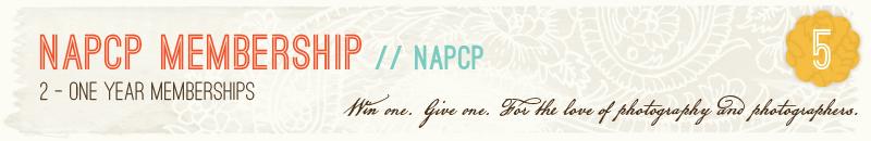 5-NAPCP-Membership.jpg