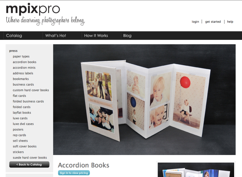 4x8-Accordion-Book-MpixPro-EWCouture-1.png