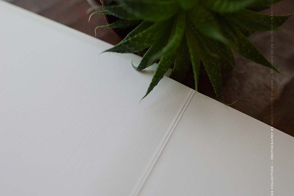 White end leaf | the Signature albums come with two end leaf options - flat black and white art paper.