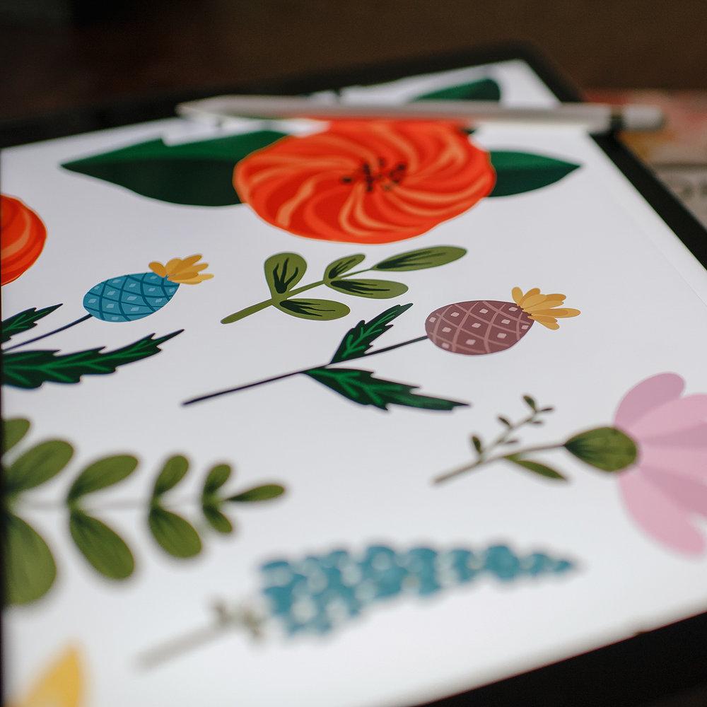 digital-illustrations-ew-couture.jpg