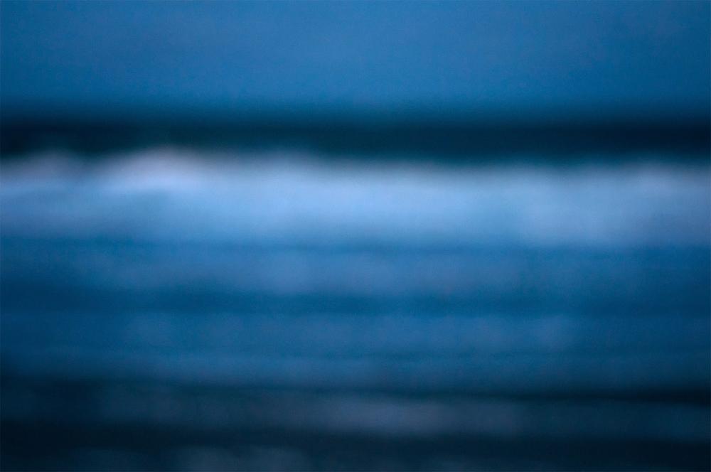 fernandina-dream2.jpg