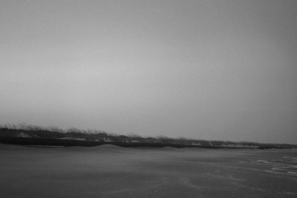 fernandina-bwoldprint.jpg