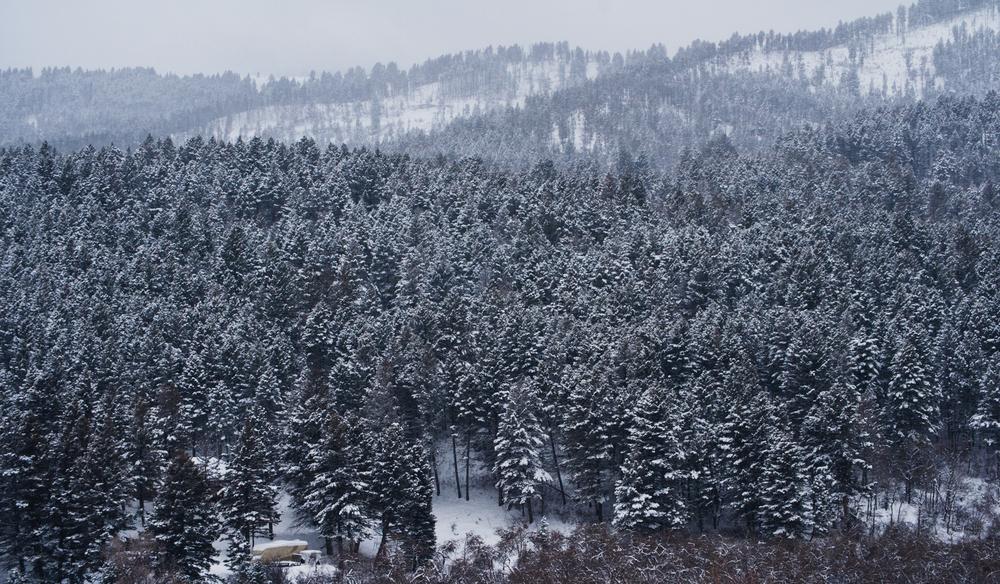 mt-snowc-12.jpg