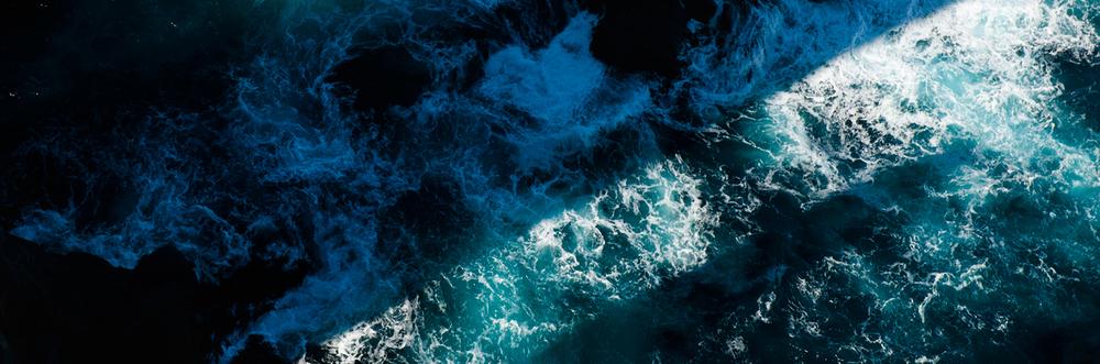 taz-water-strip.jpg