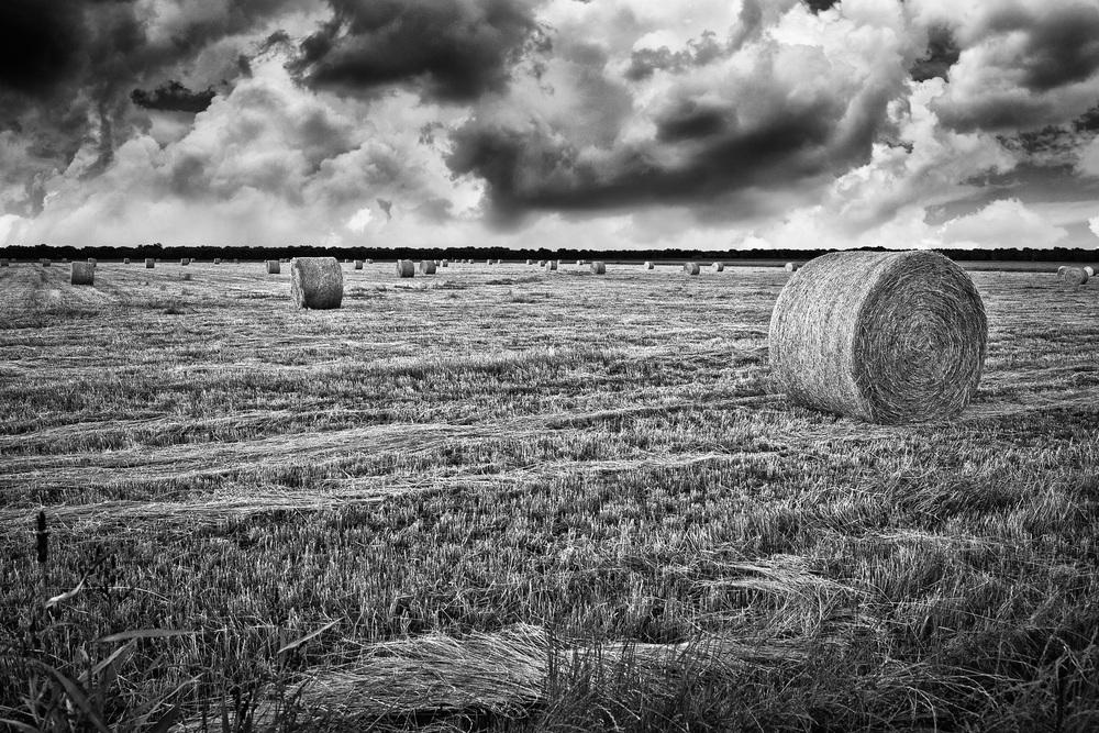 Hay-Bales-East-Texas-#2.jpg