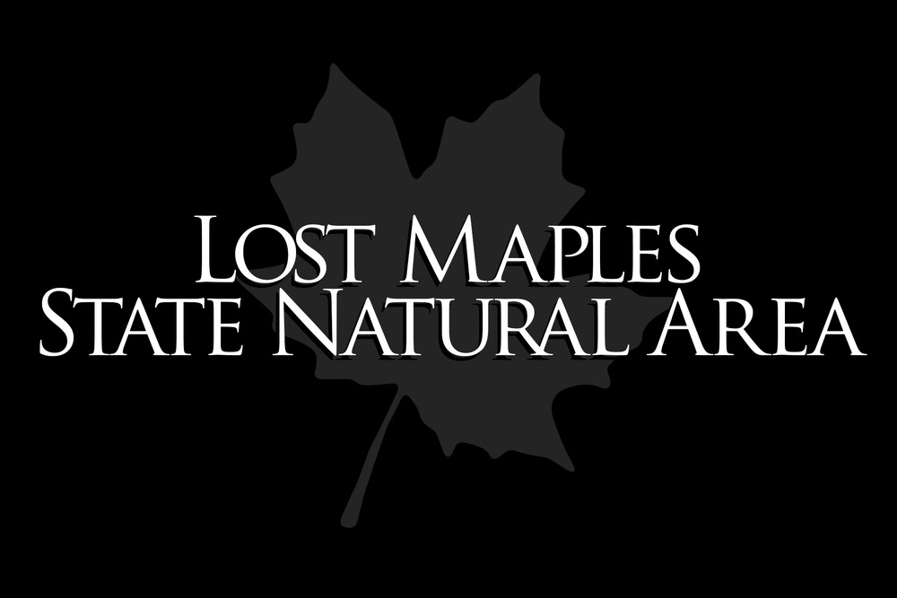LOST-MAPLES-TITLE-CARD.jpg