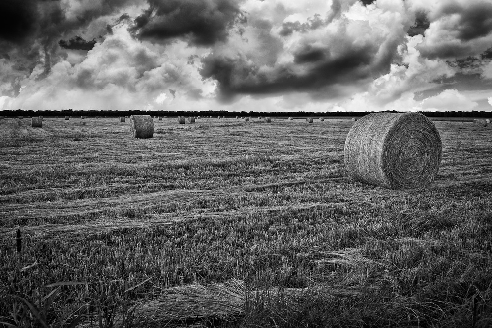 hay-bales.jpg