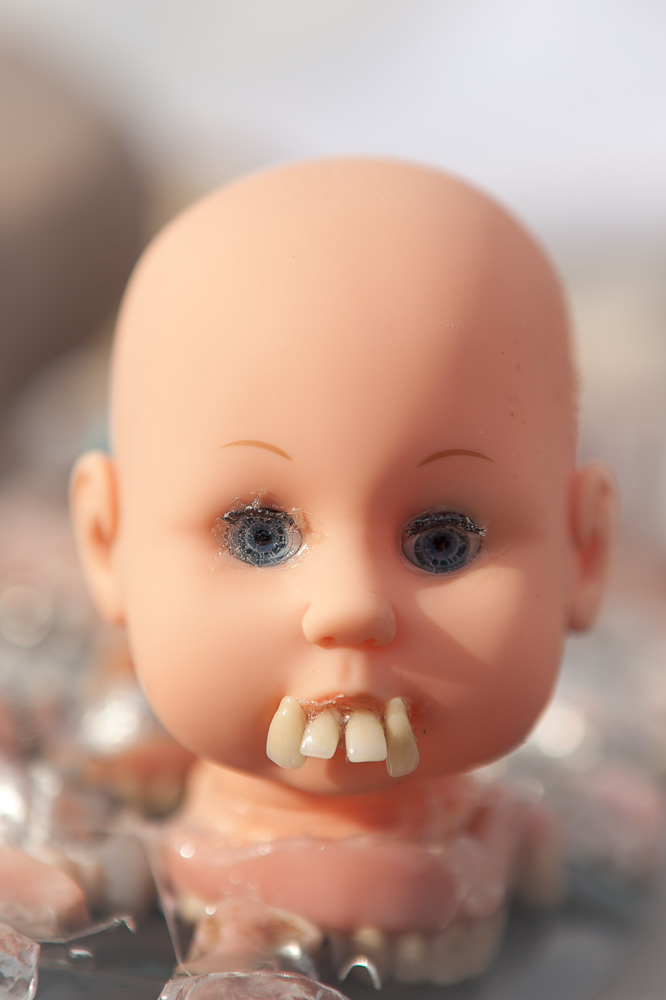 Baby-Teeth_MG_0011.jpg