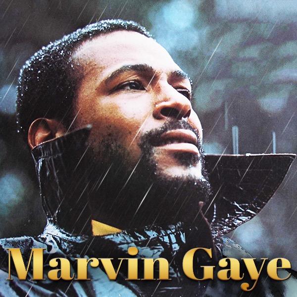 042-Marvin-Gaye.jpg