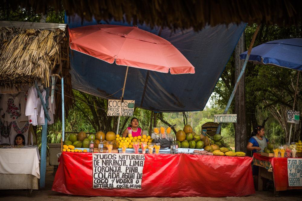 2017 - ChiapasTrip_D3_45962017 - 14.jpg