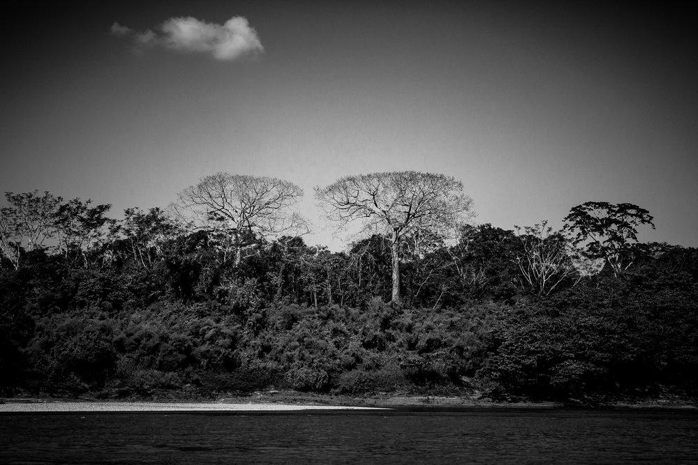 2017 - ChiapasTrip_D3_57132017 - 75.jpg
