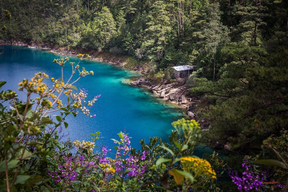 2017 - ChiapasTrip_D3_64052017 - 132.jpg
