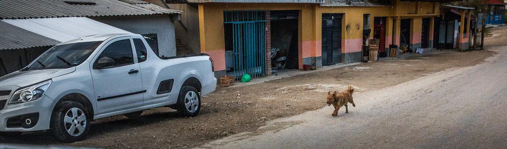 2017 - ChiapasTrip_D3_69292017 - 171.jpg