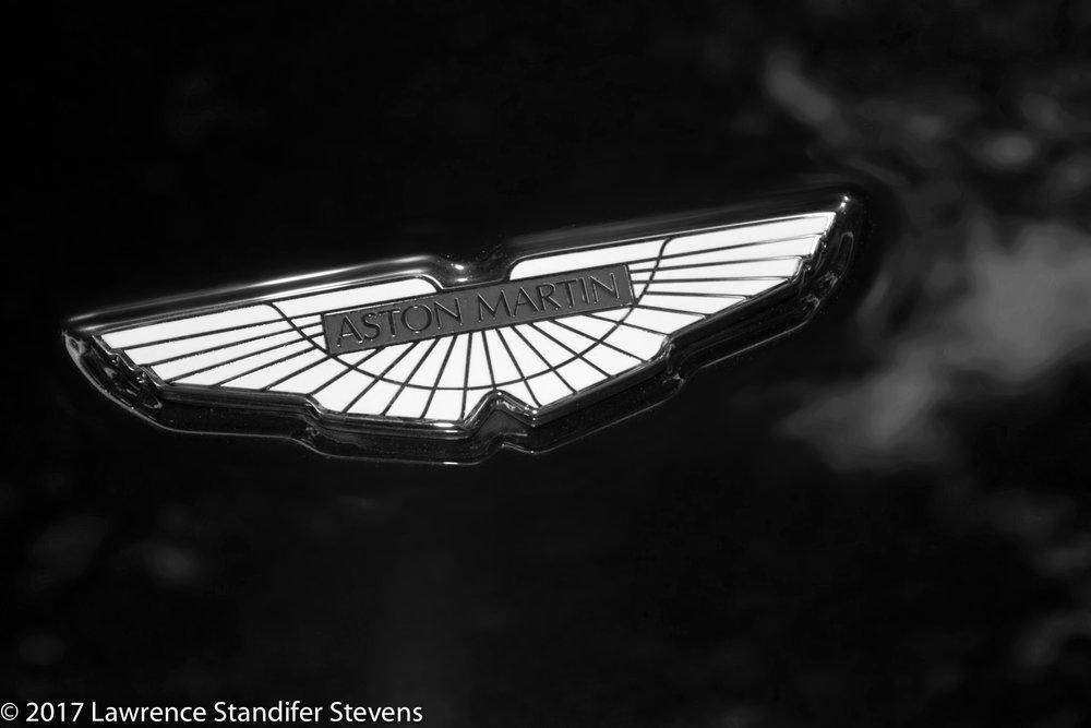 TSAP - ©2017 Lawrence Standifer Stevens-0020-(6144 x 4096).jpg