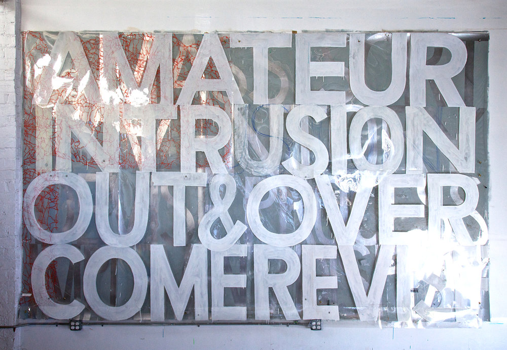 AMATEUR INTRUSION 2010  2-layers. Sign paint on clear plastic (unfinished 1994 painting),sign paint on laminated digital print.