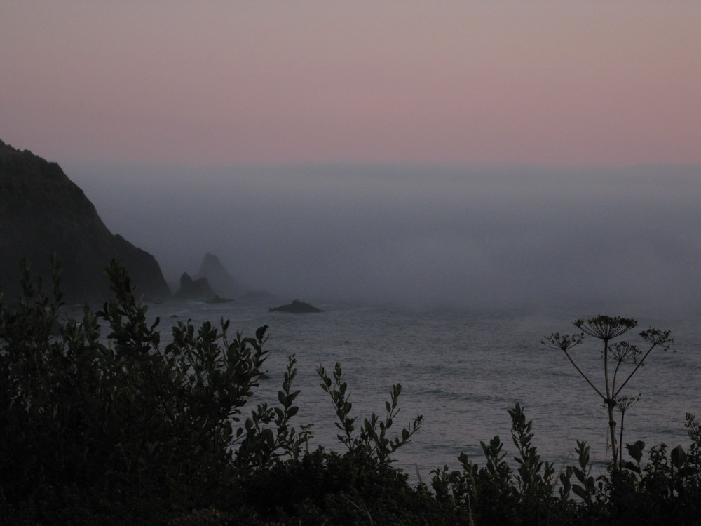 Near Port Orford