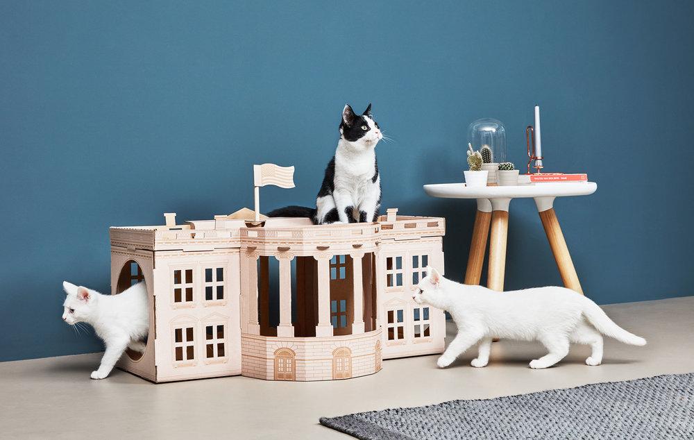 1480423870865heroLandmarks---White-House---lifestyle--cat.jpg