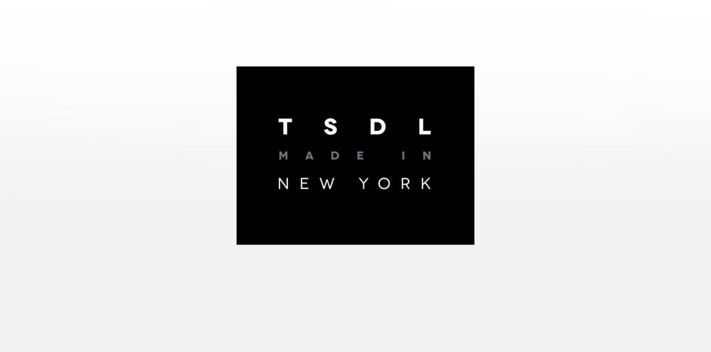 NYU Stern LARC fashion conference.jpg
