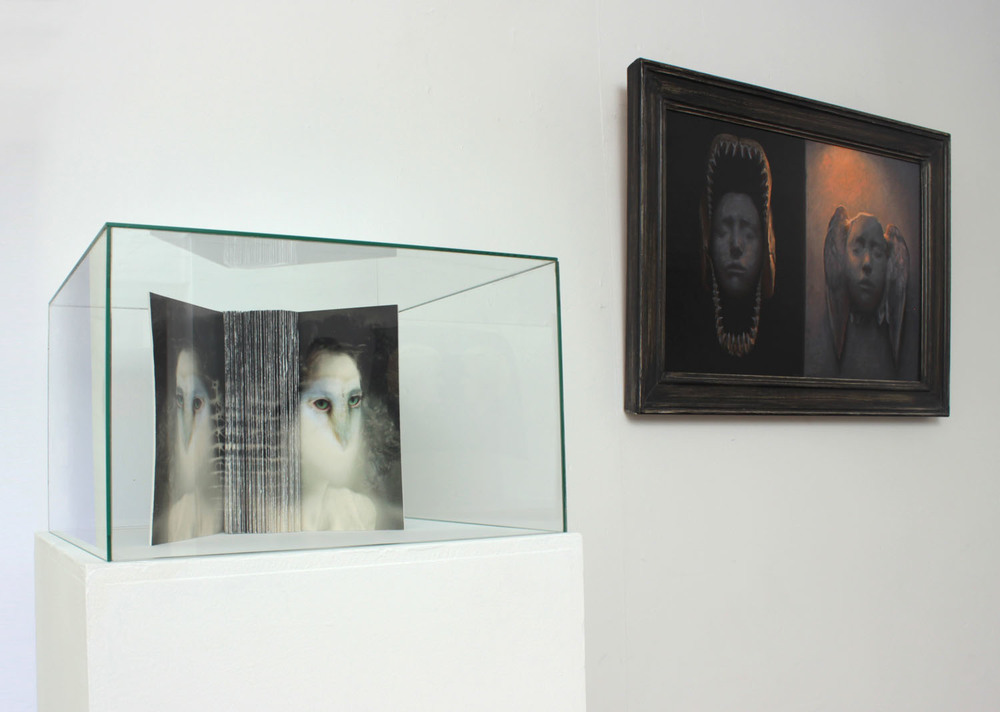 Janus Installation Shot 1.jpg
